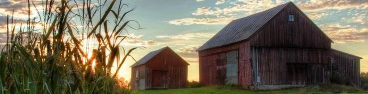 cropped-barnsban